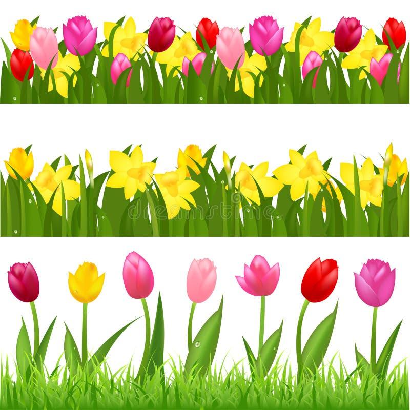 Beiras da flor ilustração stock