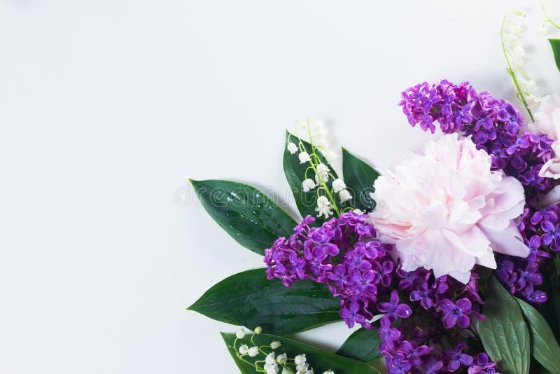 Beiras florais fotografia de stock royalty free