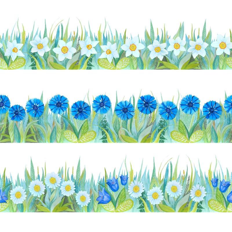 Beiras sem emenda florais coloridas Fundo brilhante - grama e flores ilustração stock