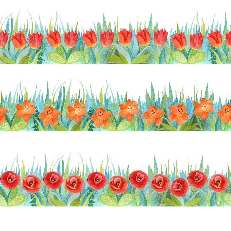 Beiras sem emenda florais coloridas Fundo brilhante - grama e flores ilustração do vetor
