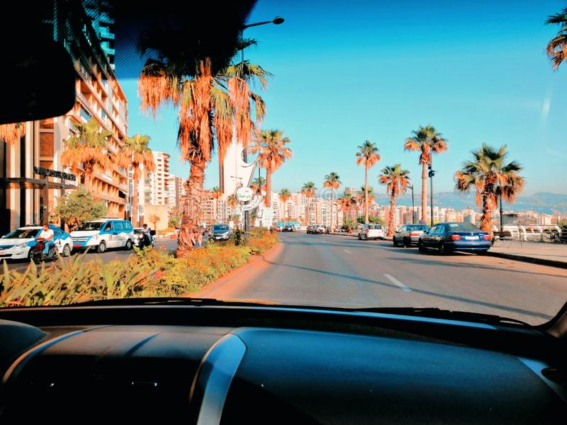 Beirut Lebanon in the summer. Palm, trees, road royalty free stock photo