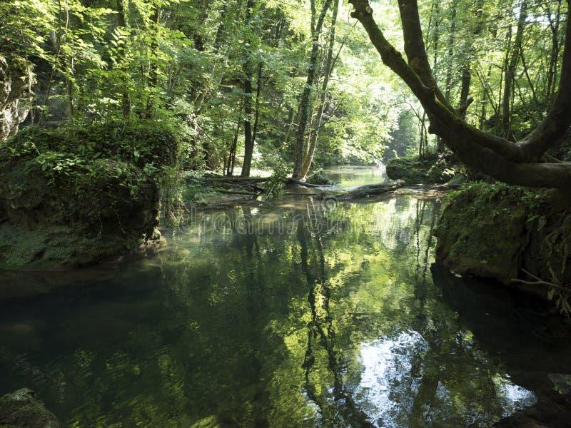 Beiu rzeka przy Cheile Nerei parkiem narodowym, Rumunia zdjęcia stock