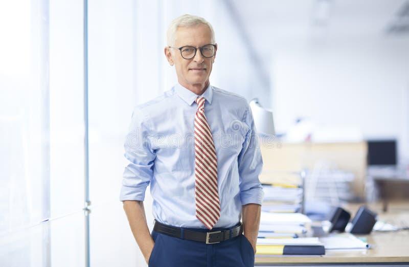 Bejaard zakenmanportret stock foto