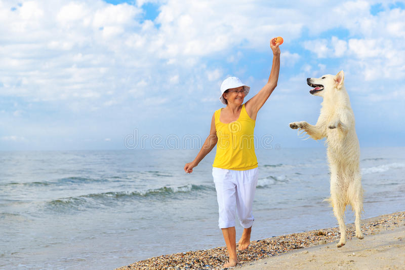 Bejaarde die met haar golderretriever lopen stock afbeeldingen