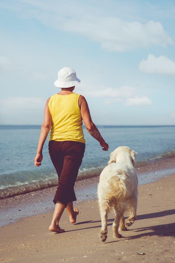 Bejaarde die met haar golderretriever lopen stock afbeelding
