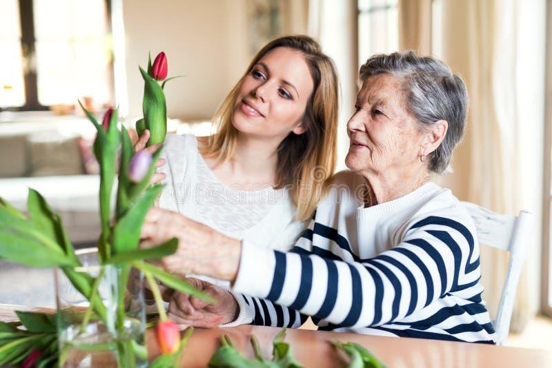 Bejaarde grootmoeder met een volwassen kleindochter thuis royalty-vrije stock fotografie