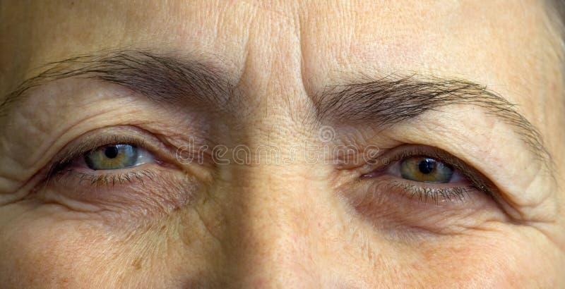 Bejaarde womansogen stock foto