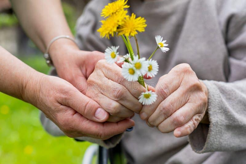 Bejaarde zorg - handen, boeket royalty-vrije stock afbeelding