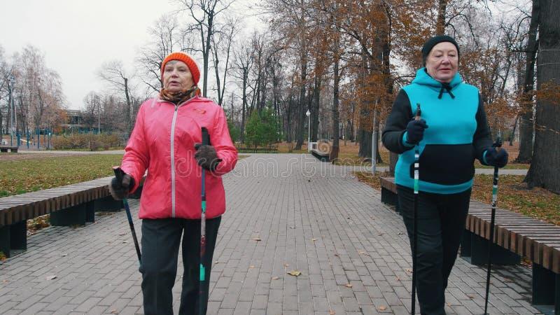 Bejaarden die op stokken van het noordse lopen op een stoep in het park lopen stock afbeelding