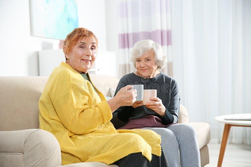 Bejaarden die thee samen drinken royalty-vrije stock foto's