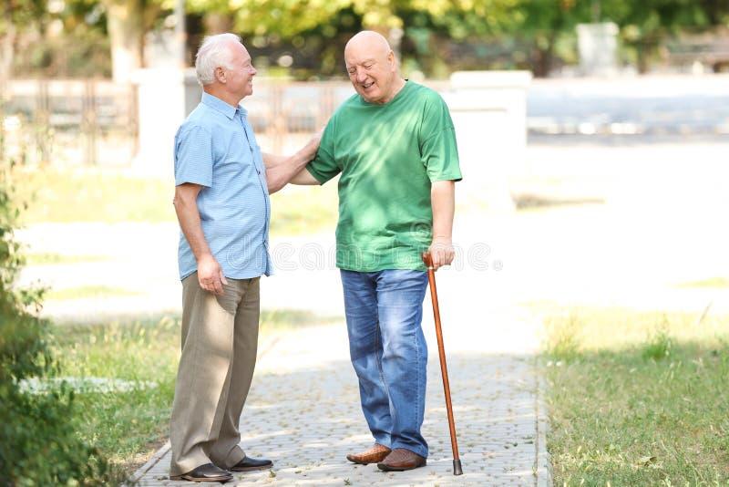 Bejaarden die tijd samen doorbrengen royalty-vrije stock afbeelding