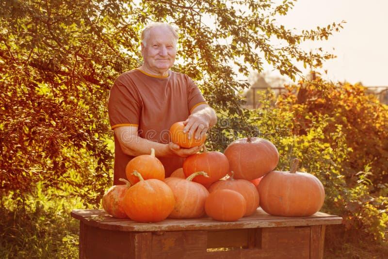 Bejaarden met pumpinks openlucht royalty-vrije stock afbeelding