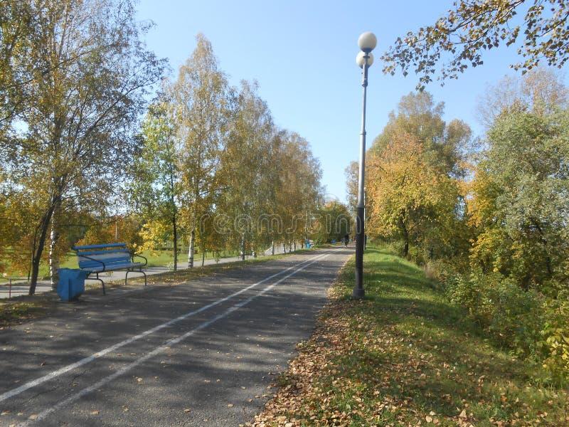 Bekijk de weg naar het park en de blauwe lucht royalty-vrije stock afbeelding