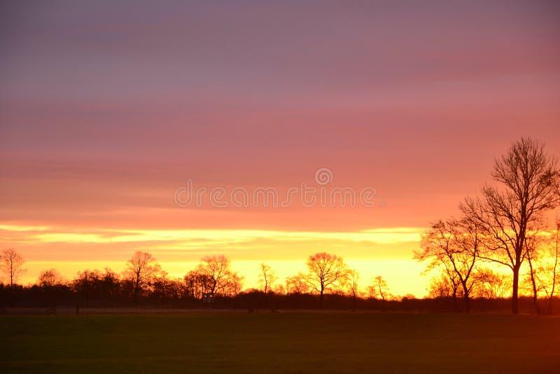 Bekijk het agrarische landschap op het nederlandse platteland in Groningen Nederland onder prachtige zonsondergang stock afbeeldingen