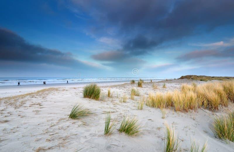 Bekijk het grote strand op Schiermonnikoog stock foto's