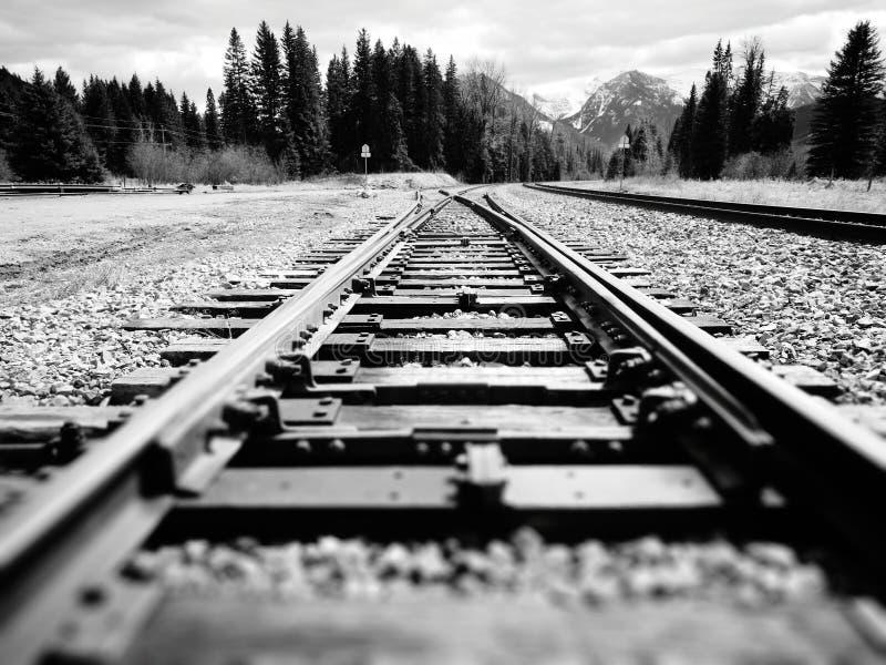 Bekijk langs spoorweg met opkomst in British Columbia, Canada stock foto's