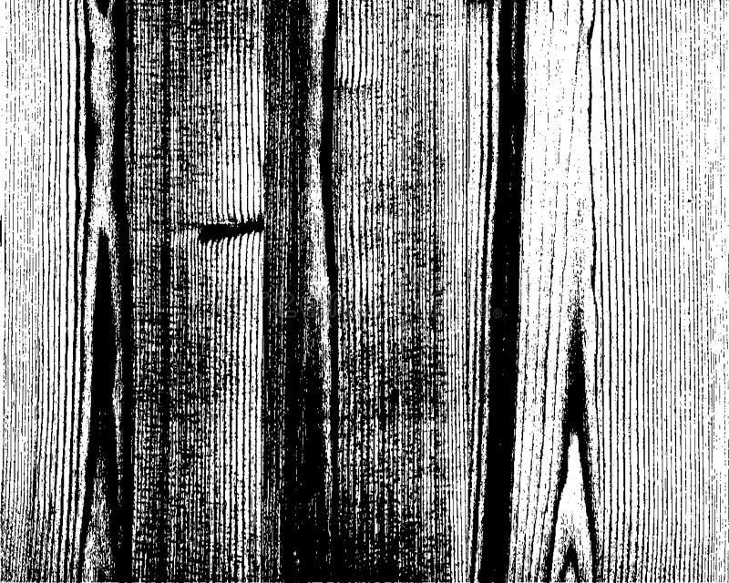 Bekymrad träsamkopieringstextur royaltyfri illustrationer