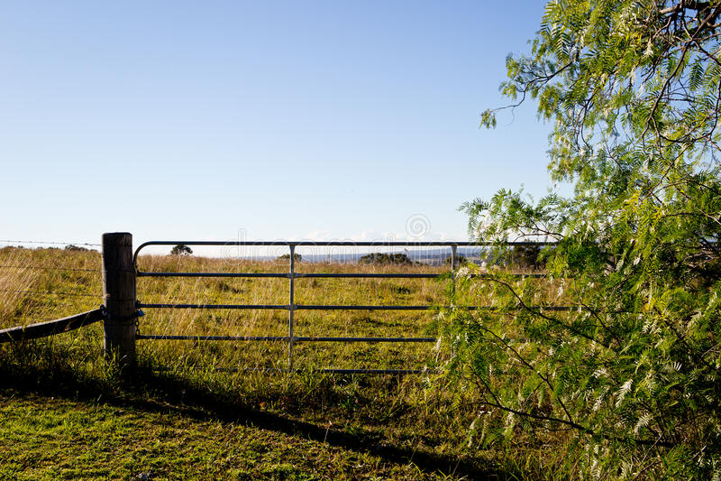 Belägga med metall porten och trästaketstolpen på fält på kullen royaltyfria bilder