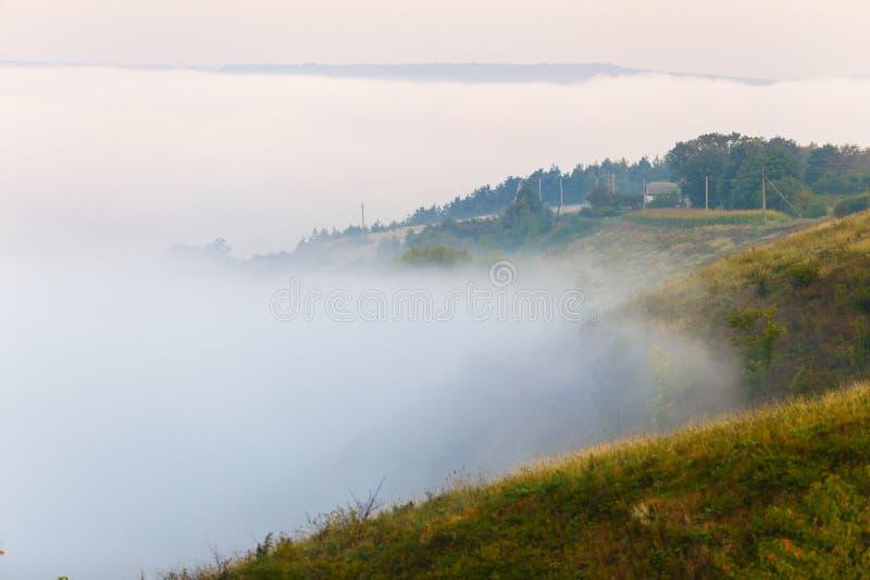 Beläggninggräsplan för tjock dimma sluttar i Ukraina trees för silhouette för morgon för dimmahusliggande arkivfoto