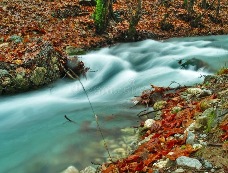 Bel écoulement d'eau de courant en automne images libres de droits