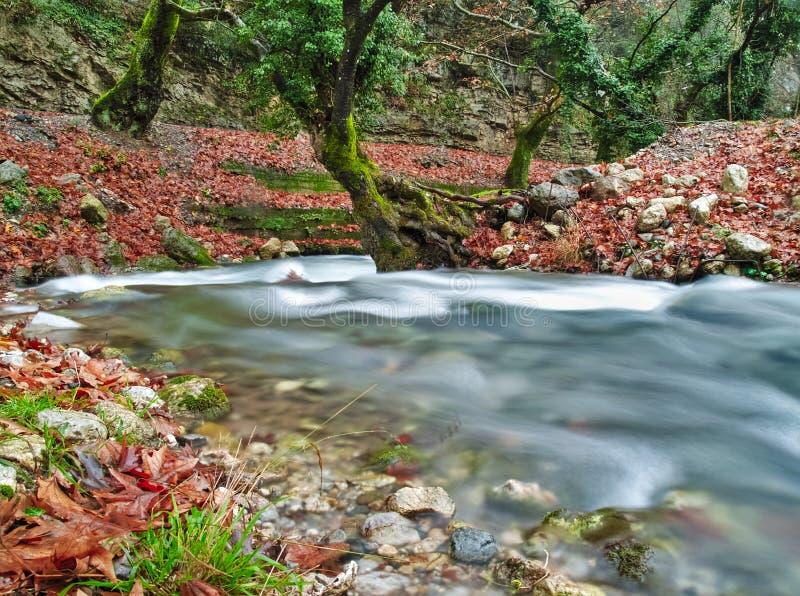 Bel écoulement d'eau de courant en automne image stock