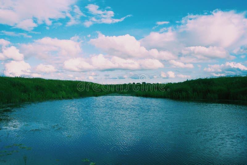 bel été de fleuve de nature d'image photos stock