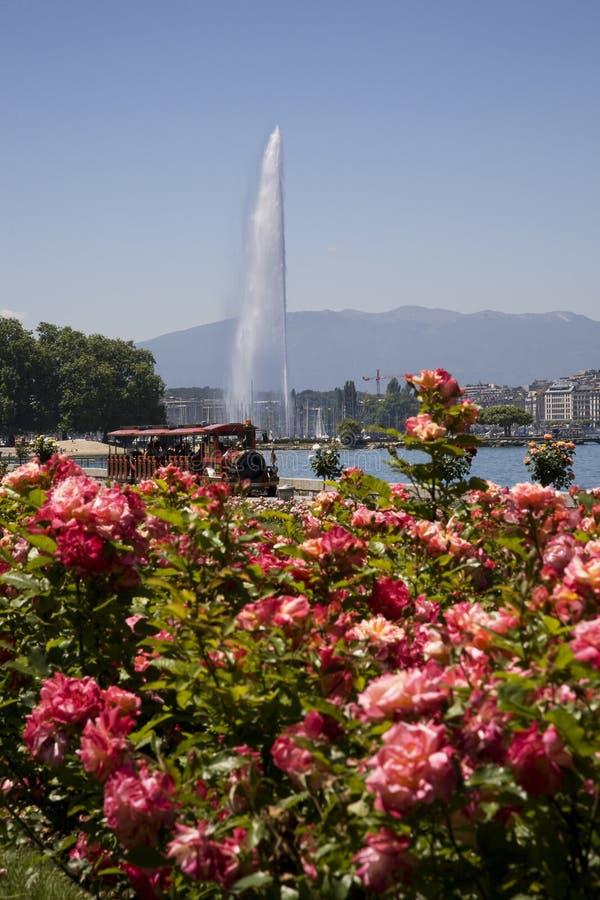 bel été de lac de Genève de jour image stock