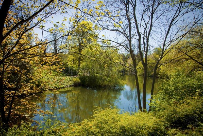 Bel étang bleu en parc de Copenhague image stock