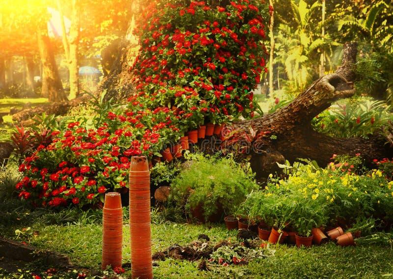 Bel aménagement asiatique de jardin formel image stock