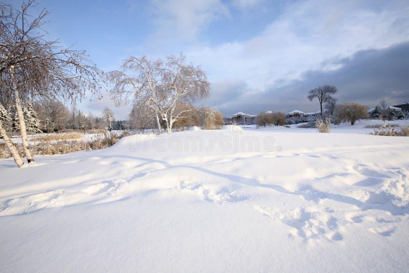 Bel après-midi blanc à Montréal photo stock