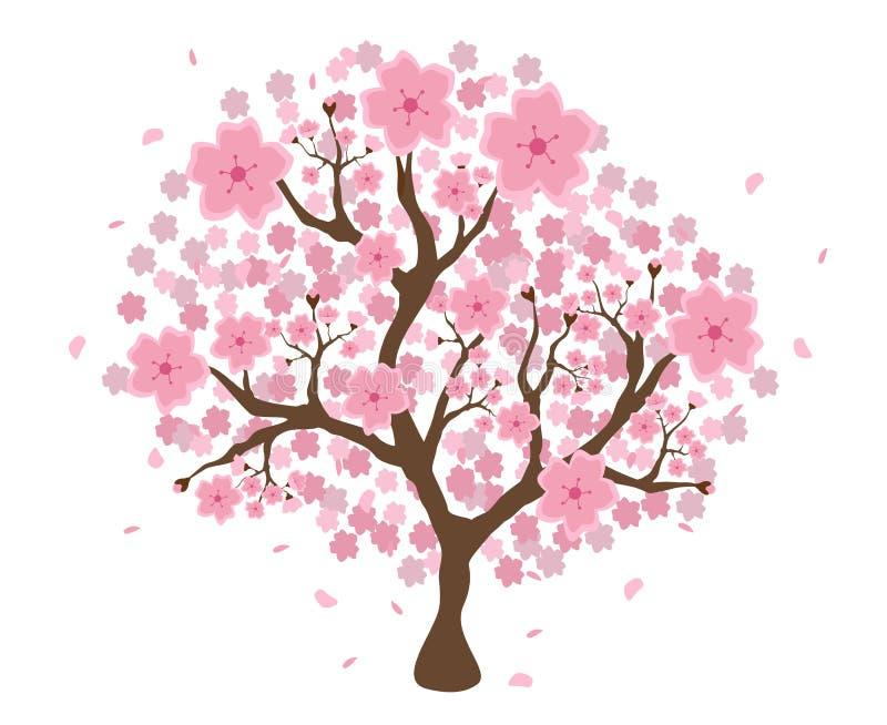 Bel arbre d'isolement de fleurs de cerisier illustration de vecteur