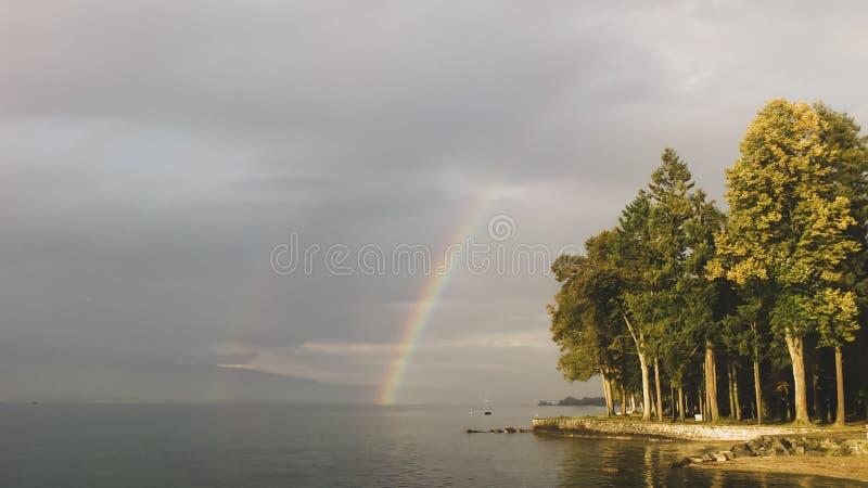 Bel arc-en-ciel au-dessus de forêt par un lac image libre de droits