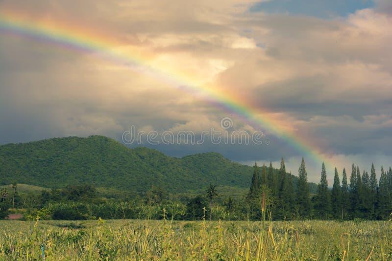 Bel arc-en-ciel au-dessus de montagne photos libres de droits