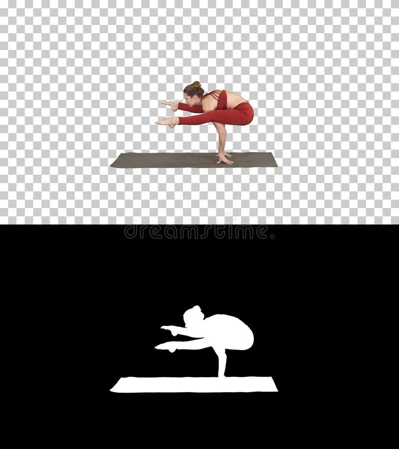 Bel asana Tittibhasana - pose de luciole, Alpha Channel de yoga d'appui renvers? de pratiques en mati?re de femme photographie stock