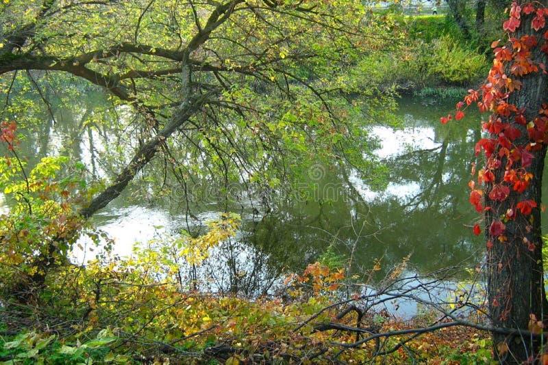 Bel automne photo stock