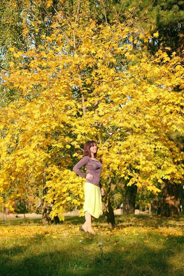 Bel automne enceinte de fille en parc Fille dans la robe jaune et le chapeau bleu Fille tenant un bouquet des feuilles jaunes photos stock