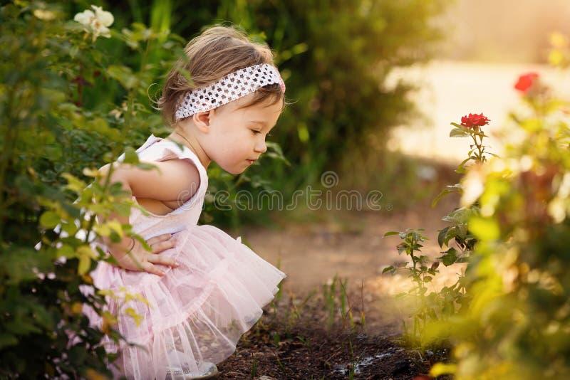 Bel enfant en bas âge un jardin regardant des fleurs image stock