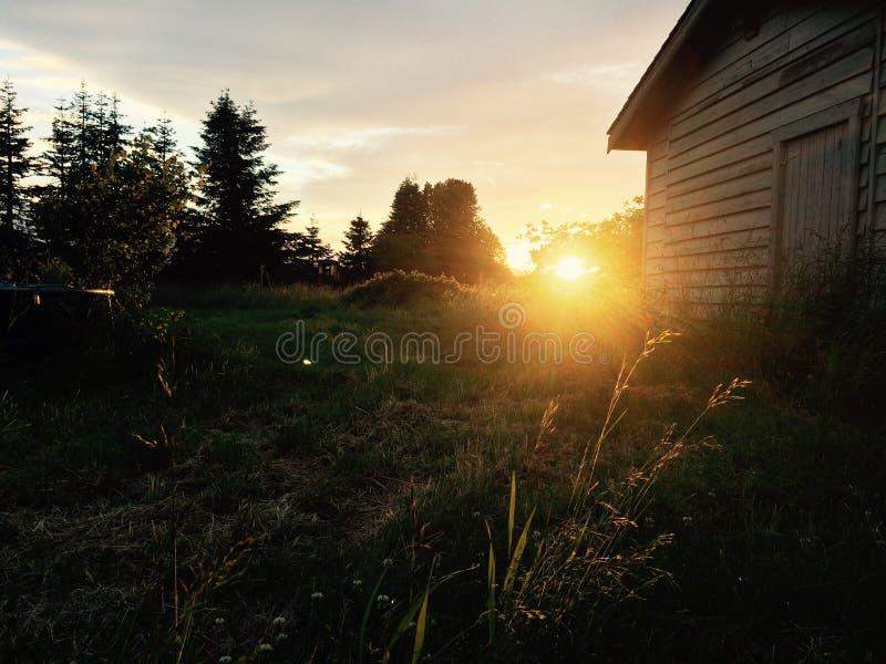 Bel ensemble du soleil photos stock