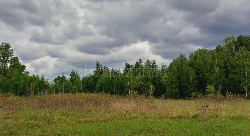 Bel horizon simple de ciel dans le domaine photo stock