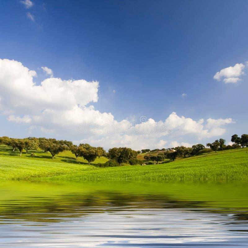 Bel horizontal avec de l'eau les moutains et photo libre de droits