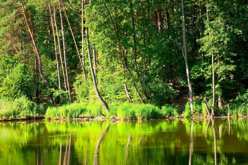 Bel horizontal avec le lac photographie stock libre de droits