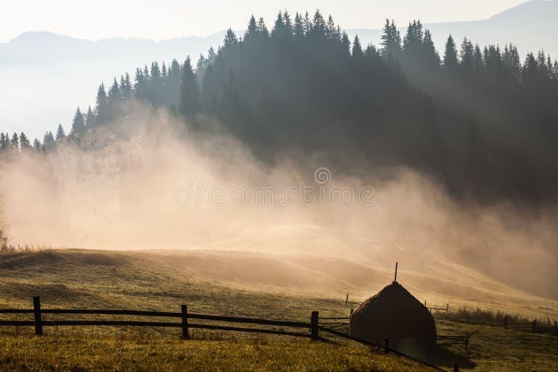 Download Bel Horizontal D'été Dans Les Montagnes Image stock - Image du coloré, panorama: 45353849