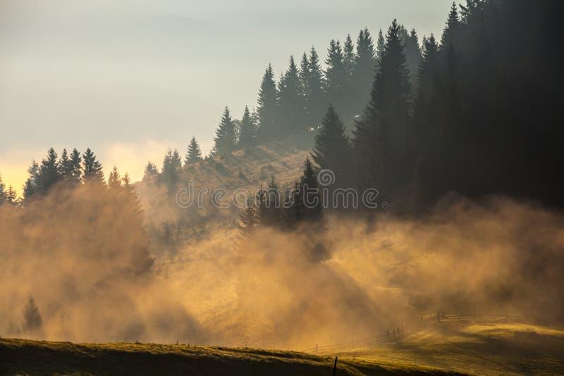 Download Bel Horizontal D'été Dans Les Montagnes Image stock - Image du majestueux, environnement: 45353927