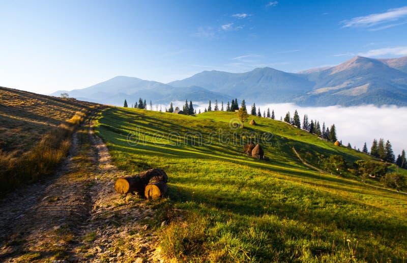 Download Bel Horizontal D'été Dans Les Montagnes Image stock - Image du sérénité, forêt: 45353943