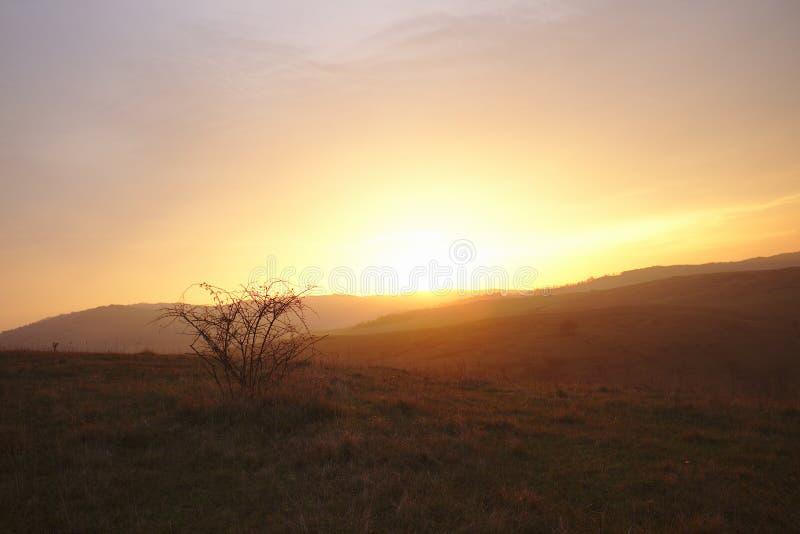 Bel horizontal d'automne photos libres de droits