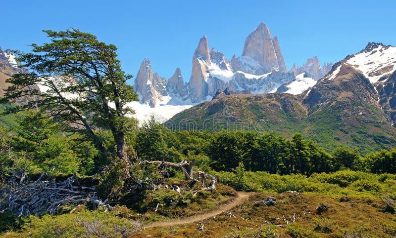 Bel horizontal de nature en Argentine photo libre de droits