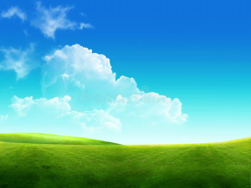 Bel horizontal, herbe verte, ciel bleu photo stock