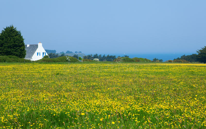 Bel horizontal rural photographie stock libre de droits