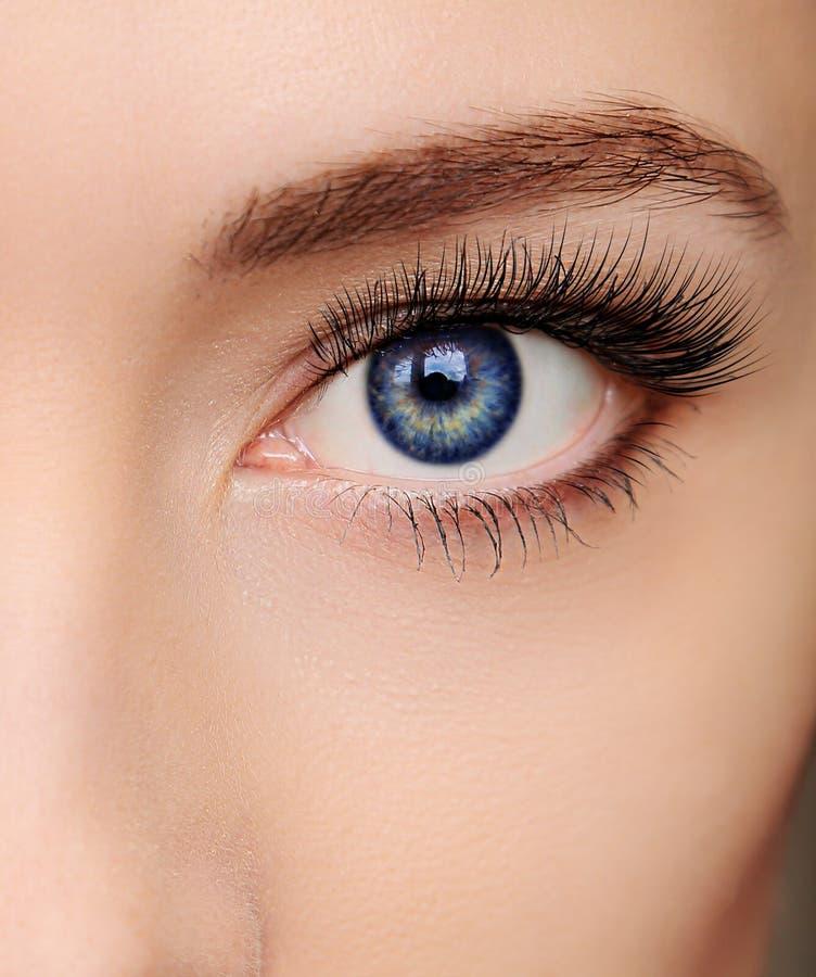 Bel oeil bleu de femme de plan rapproché photographie stock libre de droits