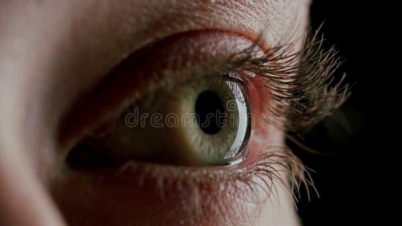 Bel oeil bleu en gros plan photo libre de droits